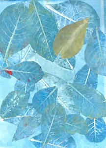 Guava Leaves 3
